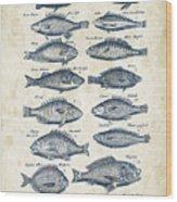Fish Species Historiae Naturalis 08 - 1657 - 14 Wood Print