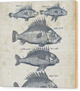 Fish Species Historiae Naturalis 08 - 1657 - 16 Wood Print
