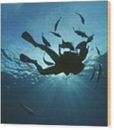 Fish Swim Around A Diver In The Cayman Wood Print