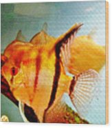 Fish Tank Wood Print