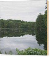 Fisherville Brook 1 Wood Print