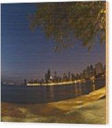 Fisheye Chicago Skyline At Dawn Wood Print