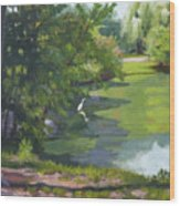 Fishing At Glen Rock Pond Wood Print