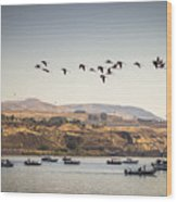 Fishing Boats And Blue Herons Wood Print