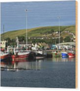Fishing Fleet At Dingle, County Kerry, Ireland Wood Print