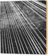 Fishing Lines Wood Print