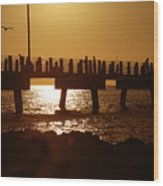Fishing Off The Pier At Fort De Soto At Dusk Wood Print