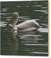 Fishing Pelican  Wood Print