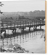 Fishing Pier And Train Tracks Wood Print