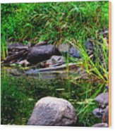 Fishing Pond Wood Print