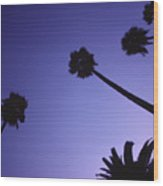 Five And A Half Palm Trees Wood Print