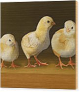 Five Chicks Named Moe Wood Print
