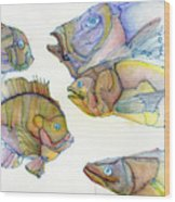 Five Fading Fish Wood Print