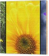 Five Flower Composite Wood Print