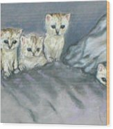 Five Kitties Wood Print