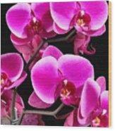 Five Orchids  Wood Print