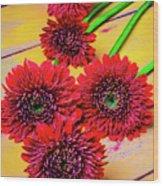 Five Red Dasies Wood Print