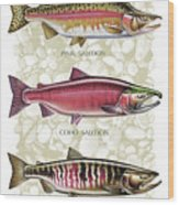 Five Salmon Species  Wood Print