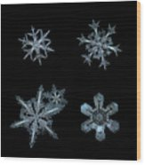 Five Snowflakes On Black 3 Wood Print