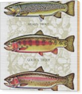 Five Trout Panel Wood Print by JQ Licensing