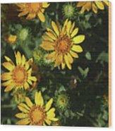 Five Yellow Flowers  Wood Print