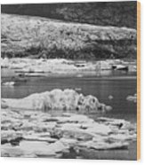 Fjallsarlon Glacier Lagoon Iceland 2348 Wood Print