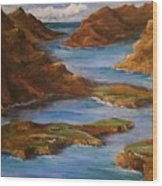 Fjords Of Norwary Wood Print