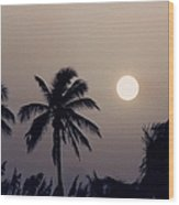 Floridian Sunrise Wood Print
