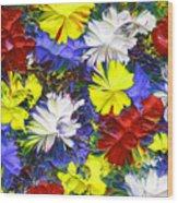 Abstract Fl12016 Wood Print