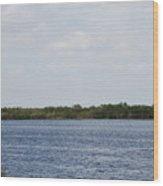 Fla Everglades Wood Print