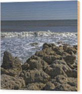 Flagler Beach 3 Wood Print