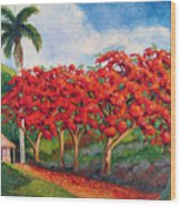 Flamboyans Wood Print