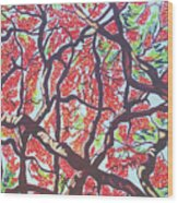 Flamboyant Beauty Wood Print