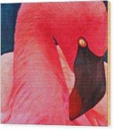 Flamboyant Flamingo Wood Print