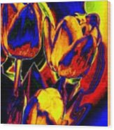 Flamboyant Tulips Wood Print