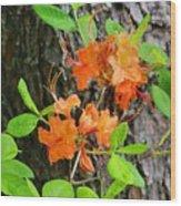 Flame Azaleas Wood Print