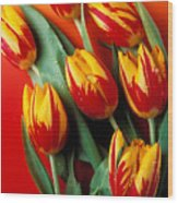 Flame Tulips Wood Print by Garry Gay