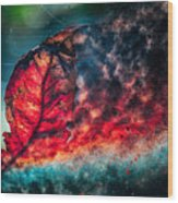 Flaming Fall Color Wood Print