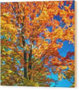 Flaming Maple - Paint Wood Print