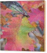 Flaming Oak Wood Print