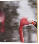 Flamingo And Rain Wood Print
