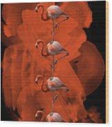 Flamingo Balance - 1 Wood Print