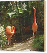 Flamingo Duo Wood Print
