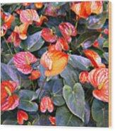 Flamingo Flower Bed Wood Print