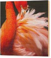 Flamingo Fluff Wood Print
