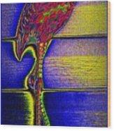 Flamingo IIi Wood Print