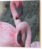 Flamingo Love Birds Wood Print
