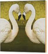 Flamingo Reflection Wood Print