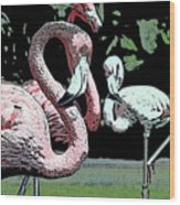 Flamingos II Wood Print