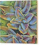 Flashy Succulent Wood Print